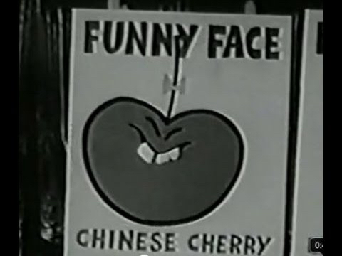 Fred Flix: Old Commercials That Would Be Politically Incorrect Today